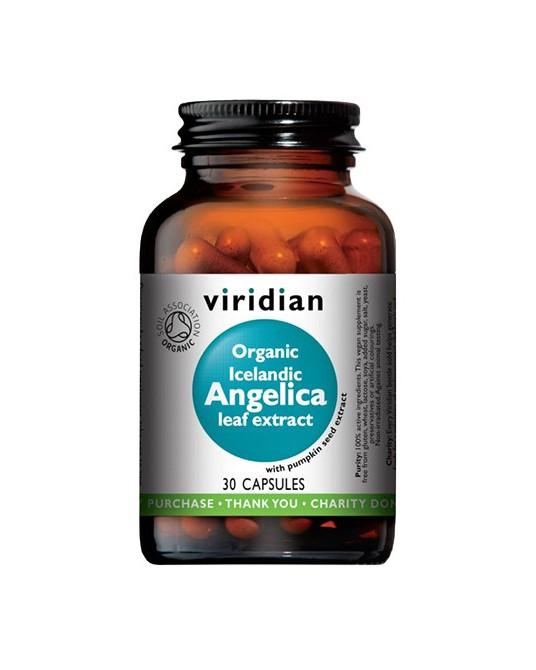 Organic Icelandic Angelica leaf extract (Arcydzięgiel litwor liście- ekologiczny ekstrakt) 30 kapsułek